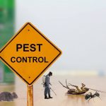 Brief History of Pest Control
